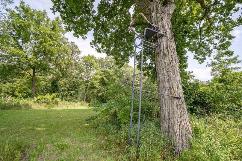 Bee tree farms 2mb (70 of 73)
