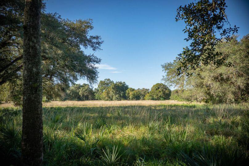 17 ranch 2 landscape