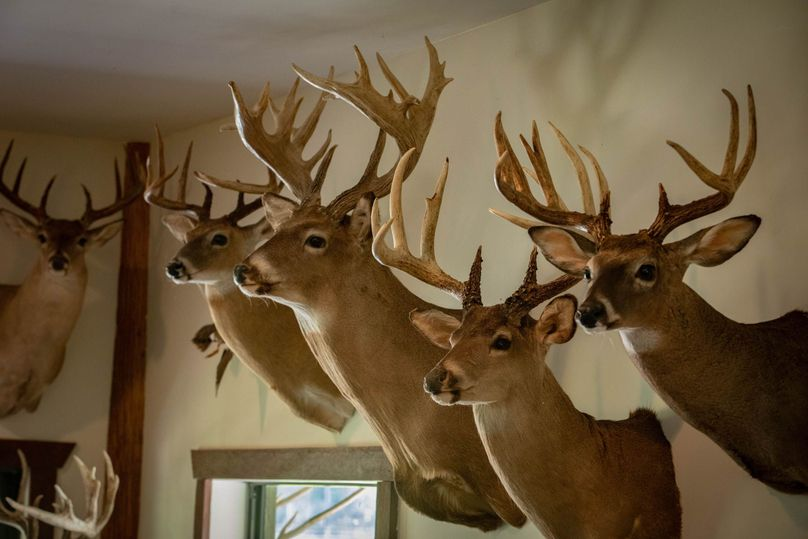 43 ranch 4 house deer
