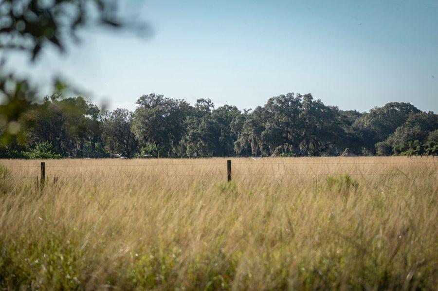 57 ranch 6 10 landscape fence