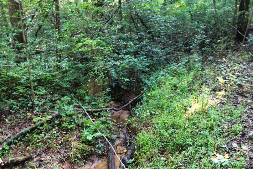 010 creek 3