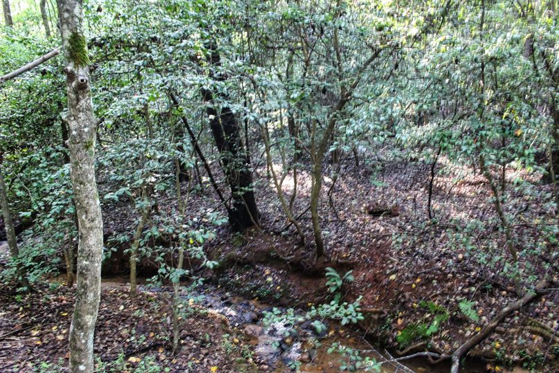 011 creek 4