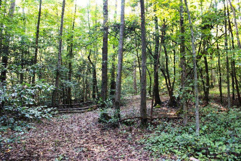 019 trail 22