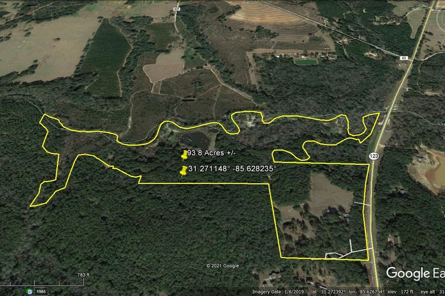 Aerial 2 approx. 93.8 acres houston county, al