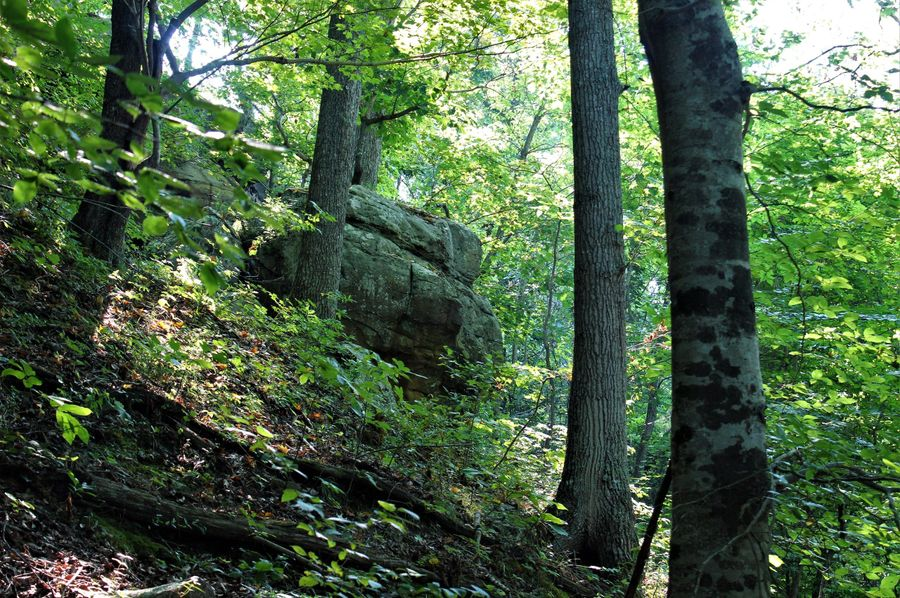 007 some rock boulders along the north ridge boundary