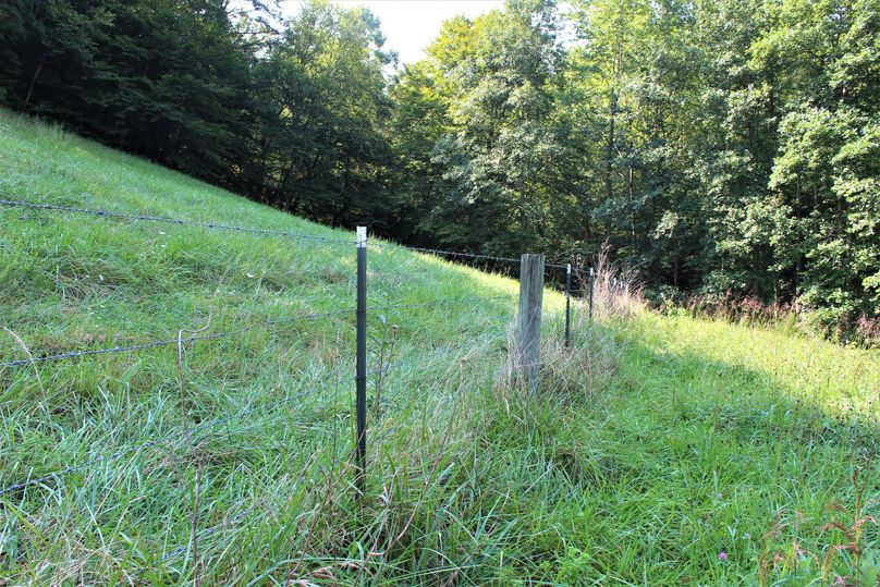 005 much of the property is fenced for pasture