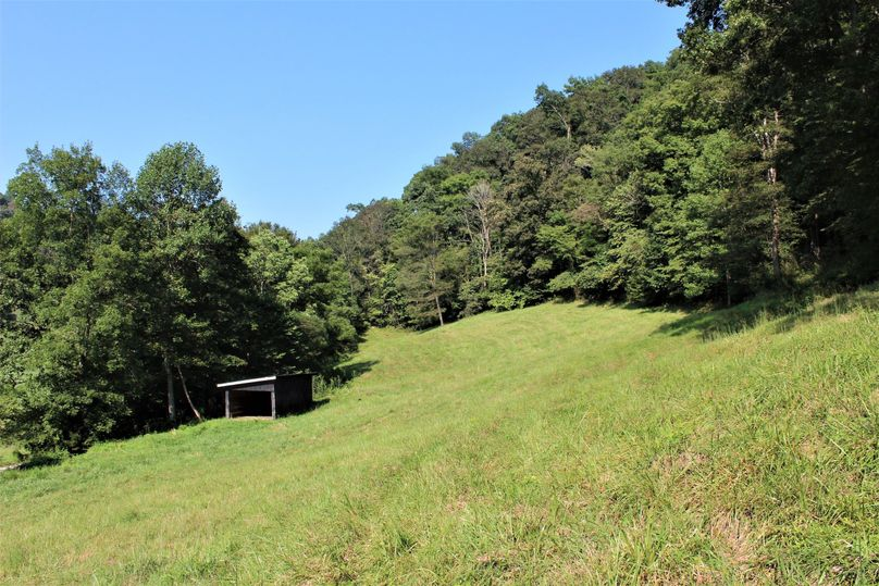006 the goat shed and small field on the north side of the road