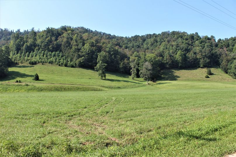 010 the rolling fields near the creek west of the home
