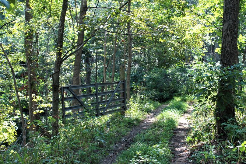 014 gated access to one of the pasture fields up along the ridge along the south boundary