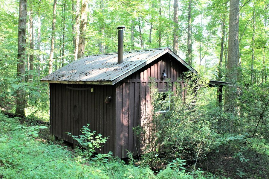 019 back view of the little cabin in the woods for adventurous getaway