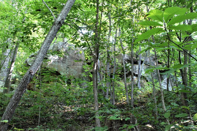020 notice the big rock fact amidst the trees along the north boundary ridge