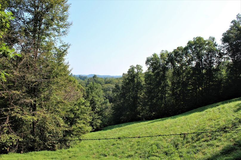 025 mid level pasture field in the south portion of the property