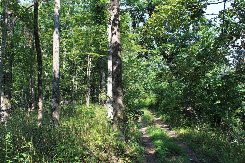 033 main line trail leading along the south ridge