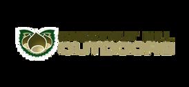 WPTV-sponsor-logo--Chestnut_Hill